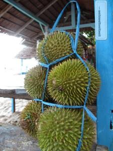 Ein Bündel Durian, wie er am Strand in Sulawesi/Indonesien verkauft wird.