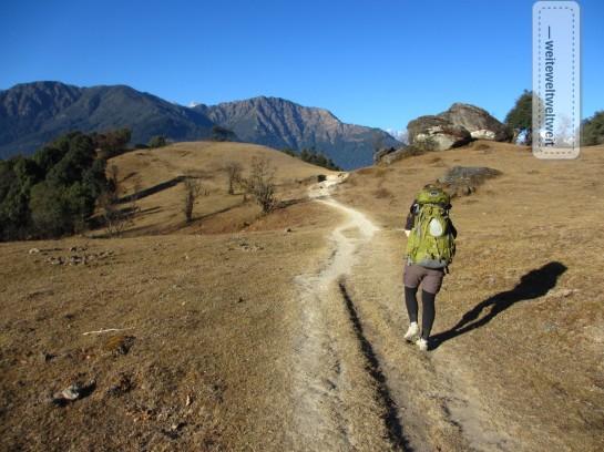 Unterwegs zu Fuß / hier in der Helambu-Region, Nepal