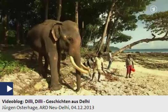 Screenshot Dilli Dilli Andamanen