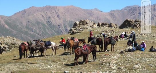 Pferdetrekking in Kirgistan / Horse back trekking in Kyrgyztan